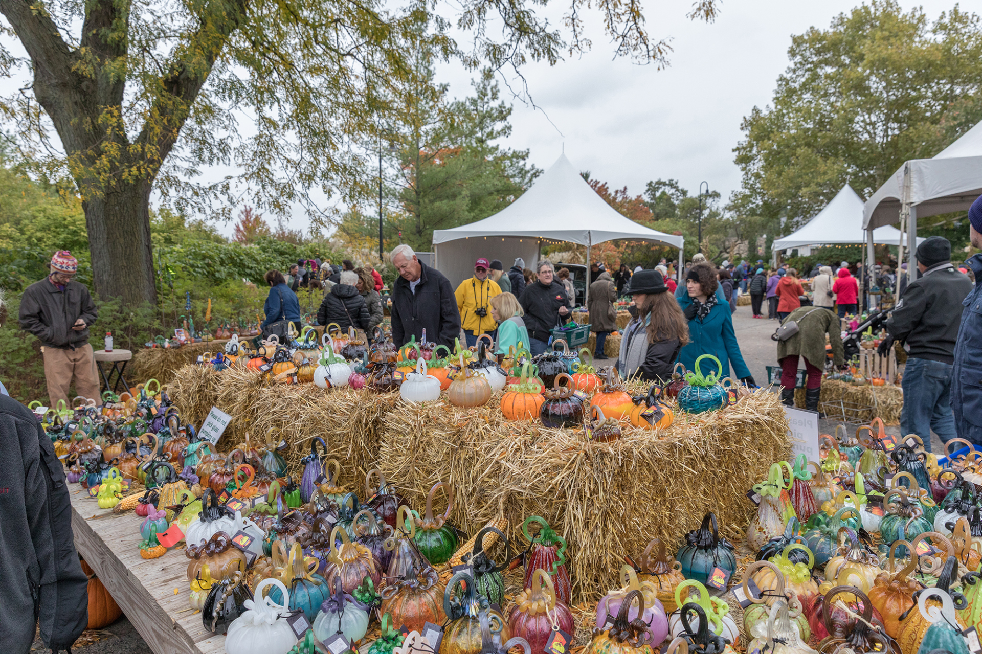 Visitors look at all the glass pumpkins on display