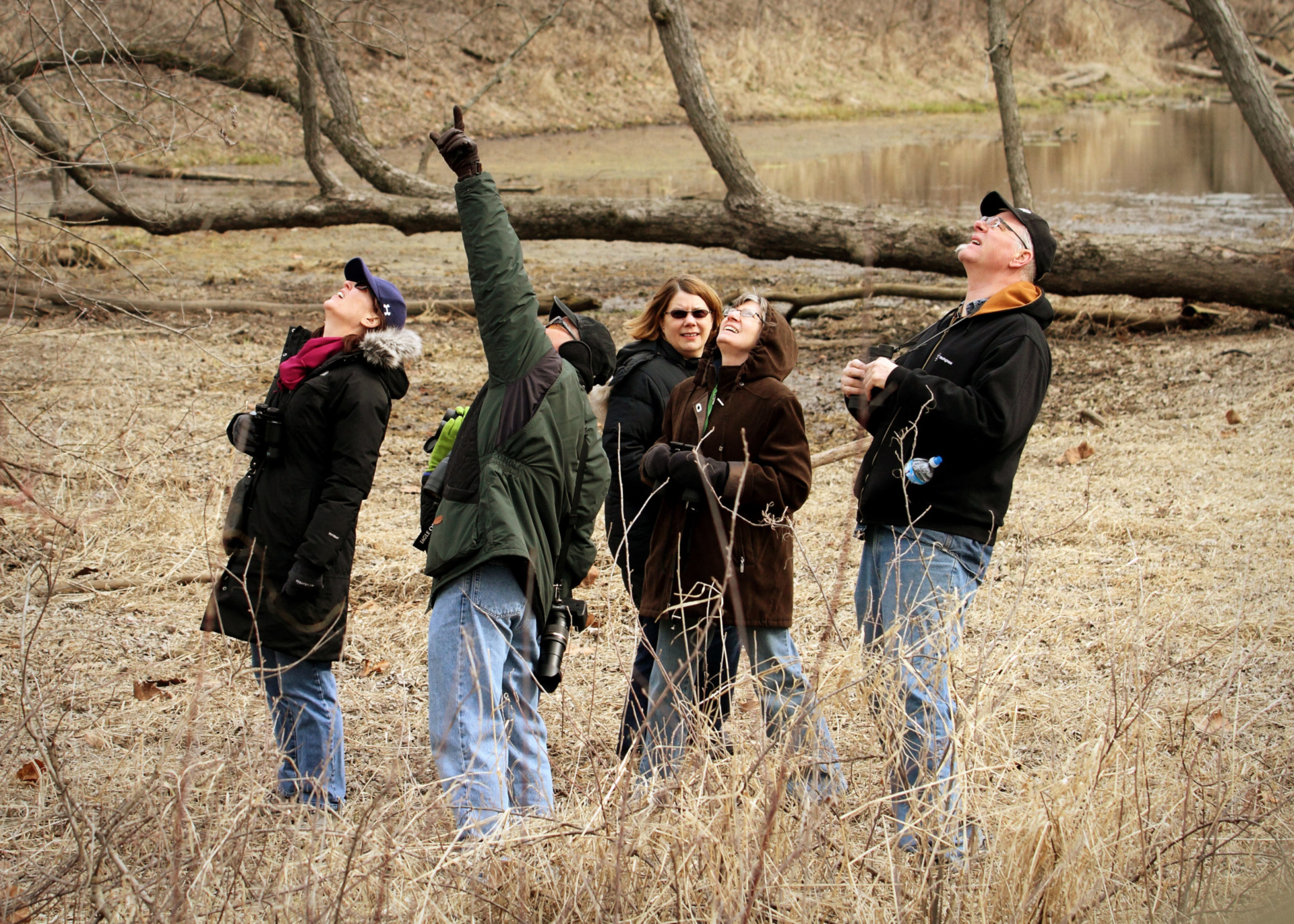 Group of people looking up and pointing at birds