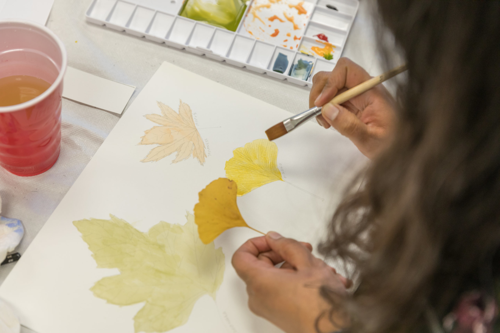 Painting a fall leaf in watercolor